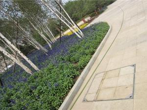 北国奥林匹克花园